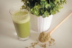 Kürbiskern Protein als grüner Smoothie
