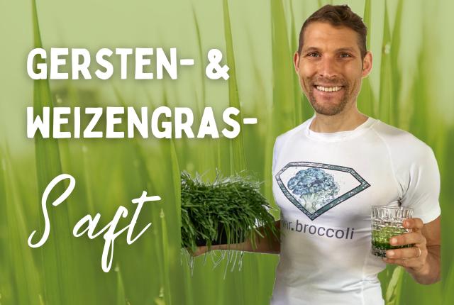 Gerstengras Weizengras Titelbild