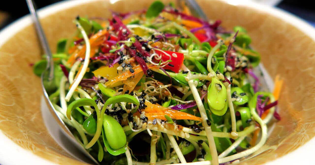 Vegan auf Reisen Sprossen-Salat