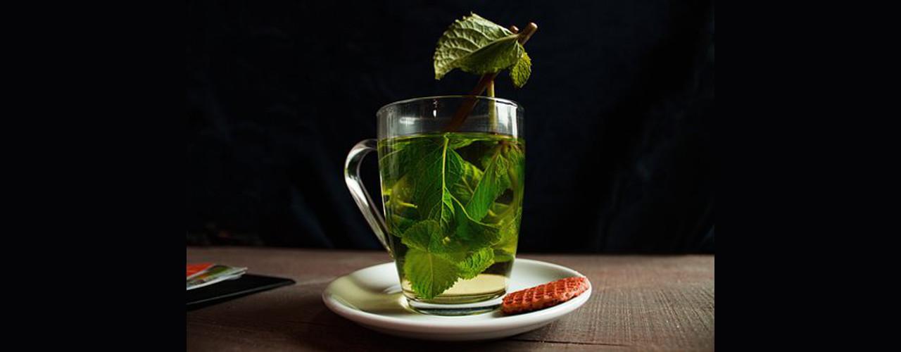 Grüner Tee jeden Tag trinken Grüner Tee