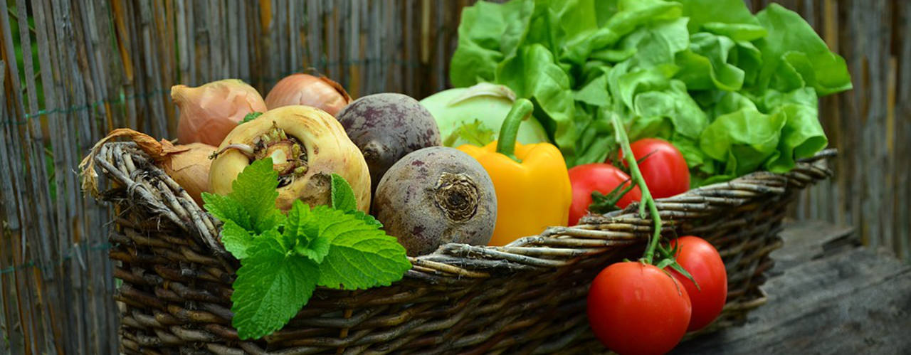 Frau hat durch veganes essen 85 kg wieder single [PUNIQRANDLINE-(au-dating-names.txt) 45