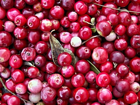 cranberries-superfood-liste