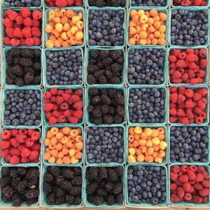 raw-vegan-rohkost-vegan-ernährung-obst-früchte