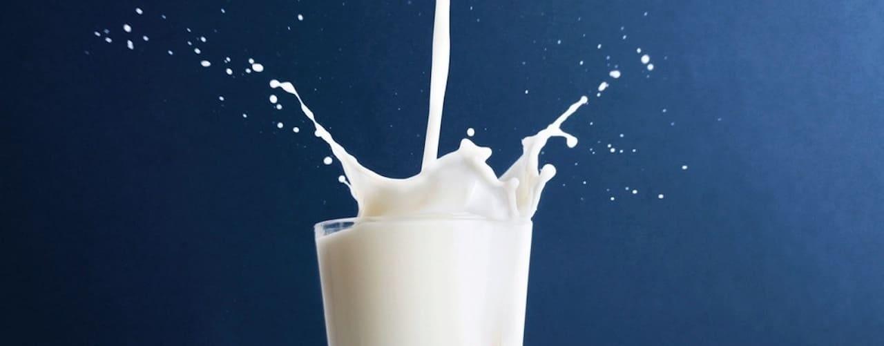 milchalternative-vegane-milch-pflanzliche-milch-reismilch-hafermilch-sojamilch-milchersatz