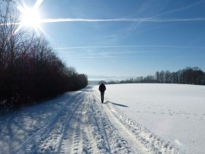 Die Vitamin D Zufuhr ist auch im Winter besonders wichtig für den Körper.