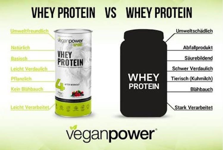 vhey-protein-vs-whey-protein