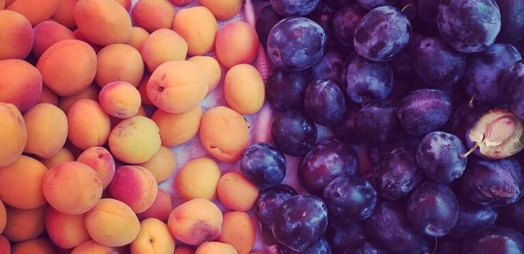 schleimfreie Heilkost Obst
