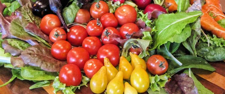 Vegan-Sport-ernährungsarten