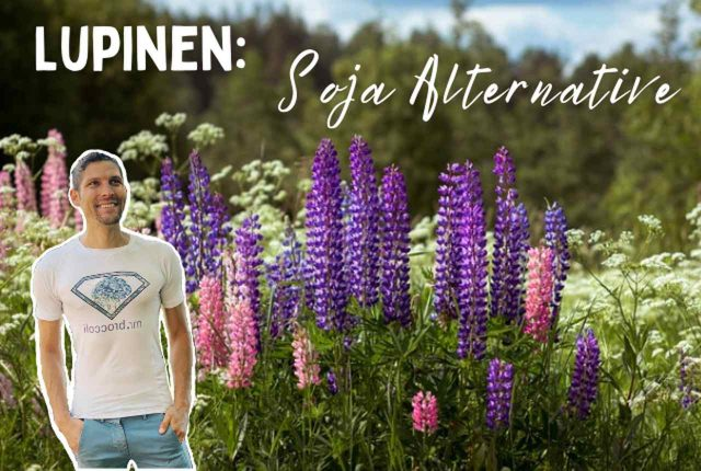 Lupinen Soja Alternative Titelbild