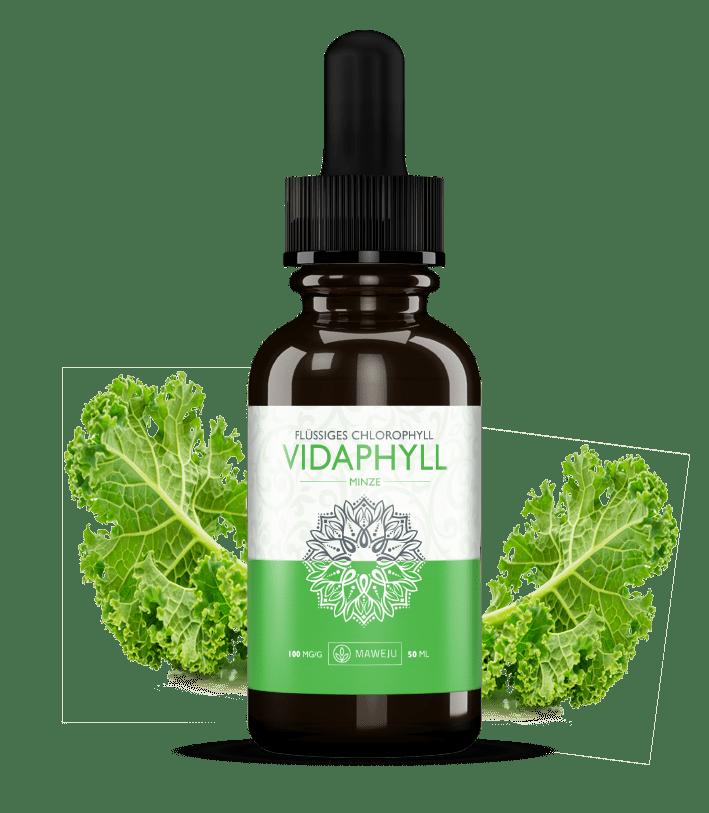 chlorophyll-vidaphyll