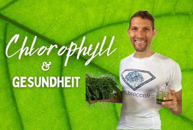 Chlorophyll titelbild