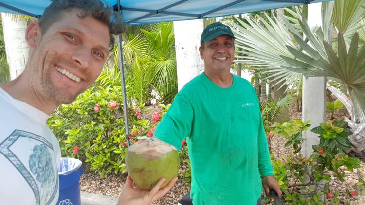 Kokosnuss-frisch