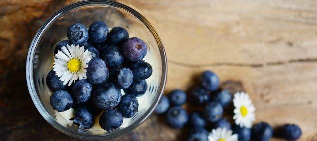 regeionale-superfood-blaubeeren