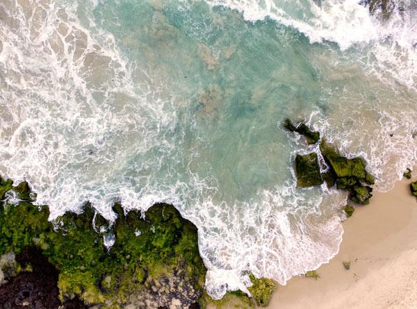 Omega-3 kann auch im Einklang mit dem Meer und seinen Bewohnern gewonnen werden