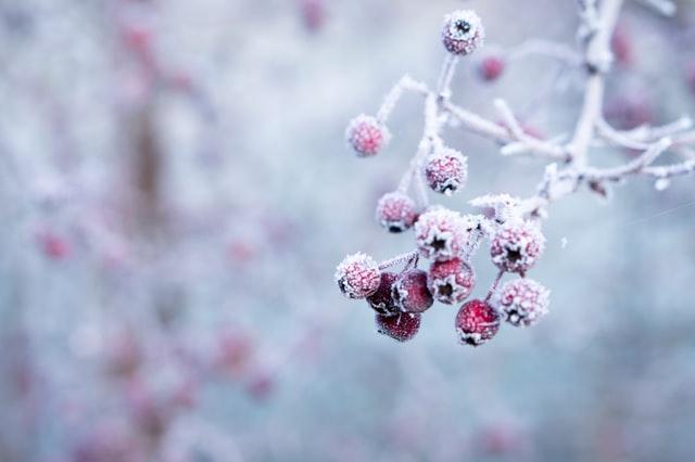 Ausbleiben der Periode_Amenorrhoe_Winter