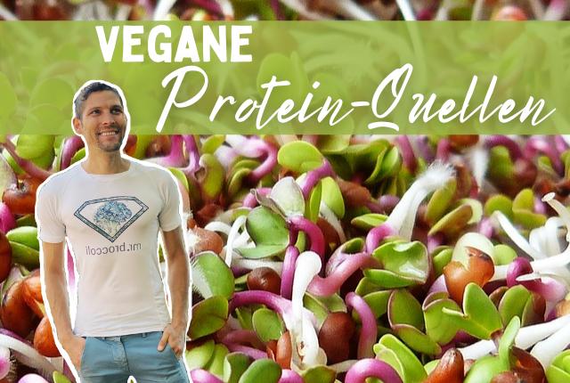 Vegane Proteinquellen Titelbild