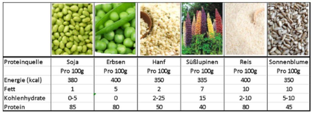 Vegan Protein Shake Test 1