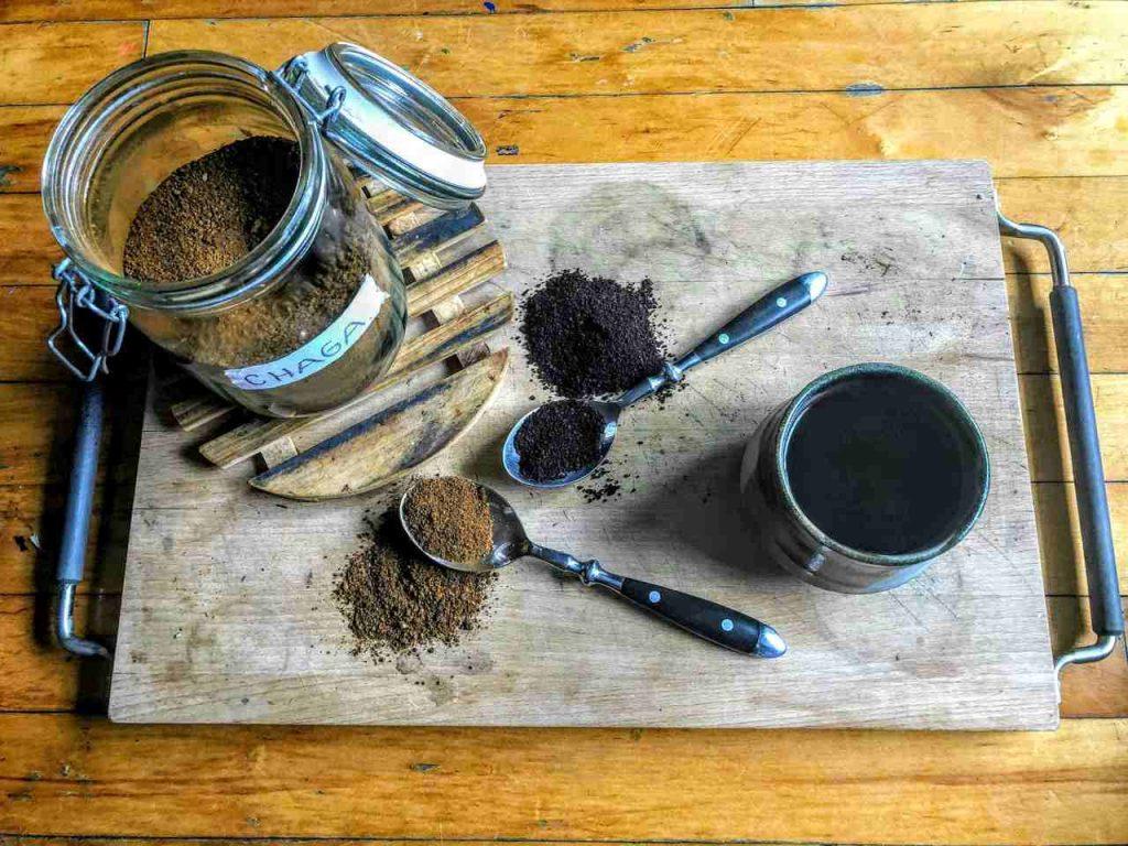 Chaga Tee Wirkung Bild