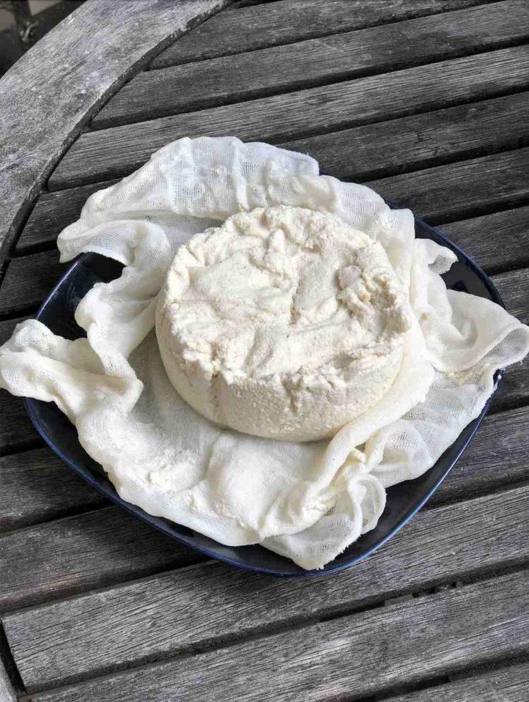 Cashew Käse1