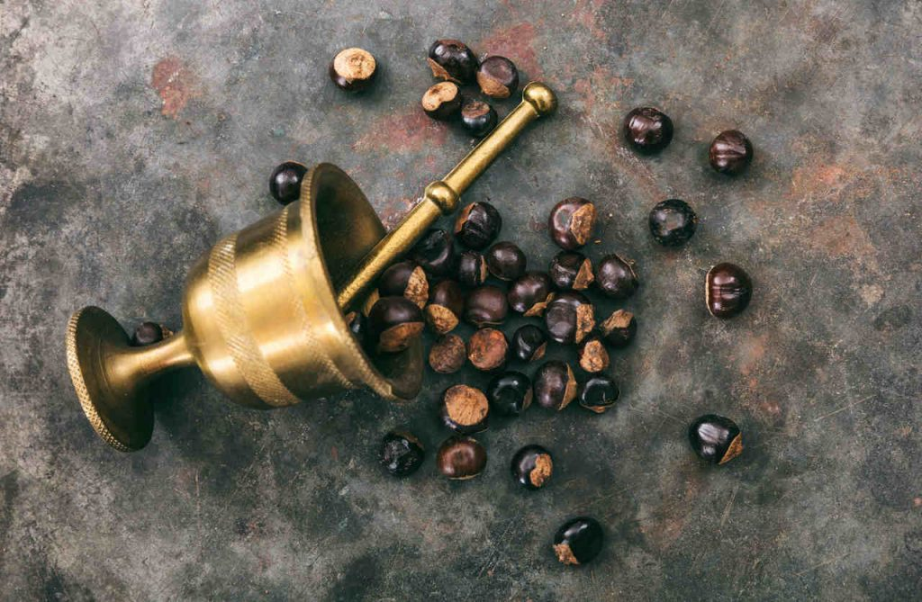 Guarana Wirkung - Guarana Koffein