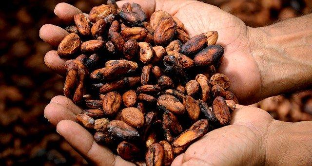 kakao gesund hand